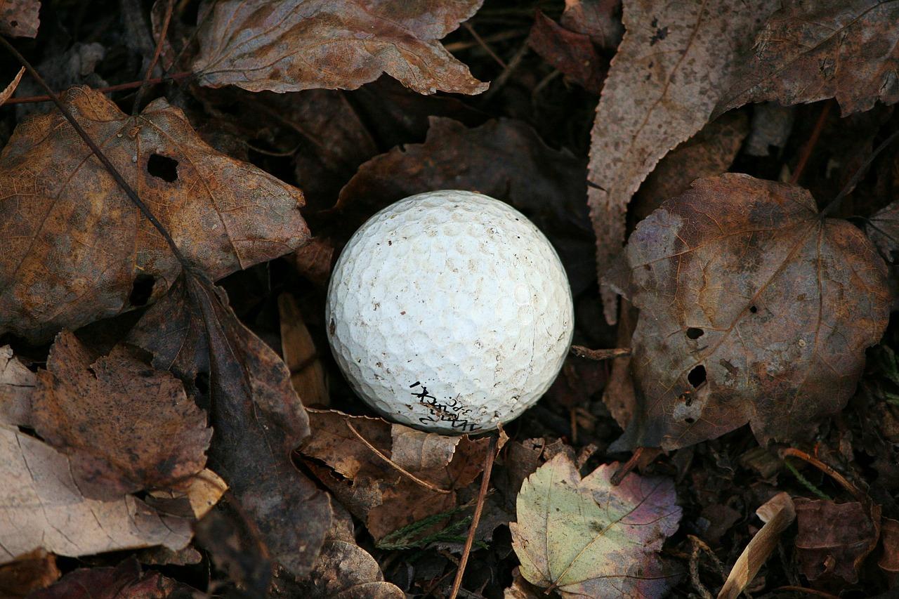 golf-ball-65646_1280